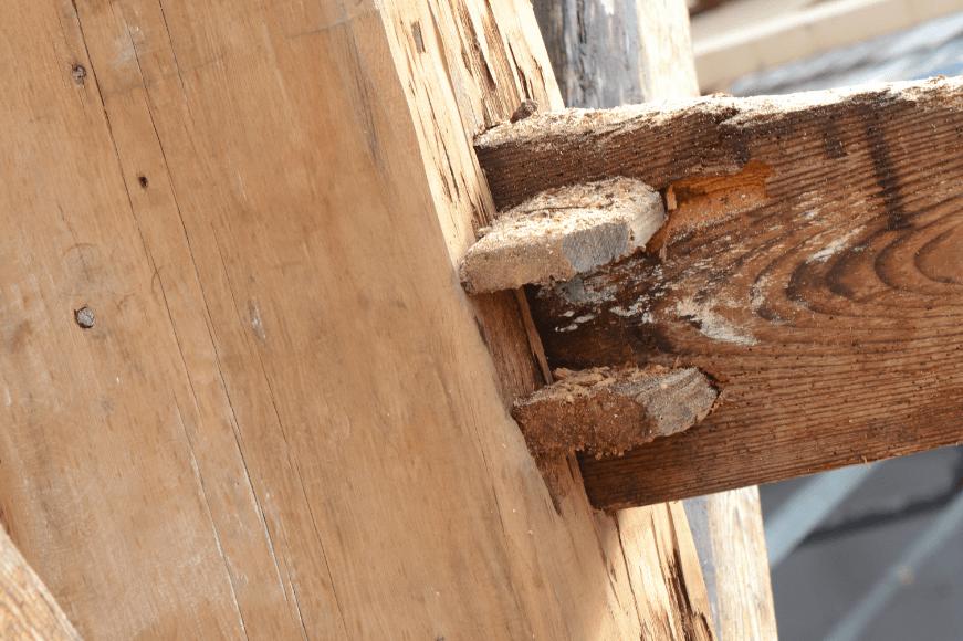 Fotoserie verbouwing Oosterhout: van schuur tot woonhuis
